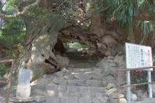 89_48生樹の御門