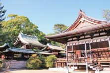 111_48弓弦羽神社